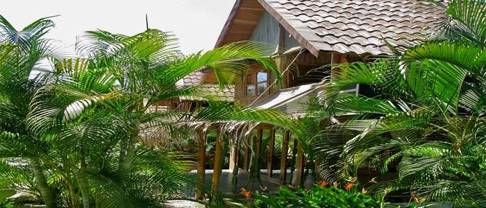 Griss Costa Rica