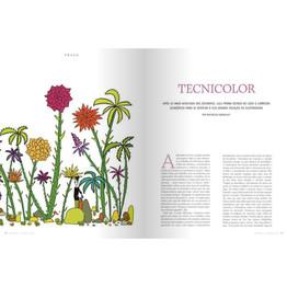 Revista Imprensa