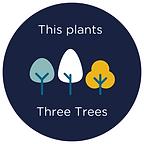 Three Trees.png