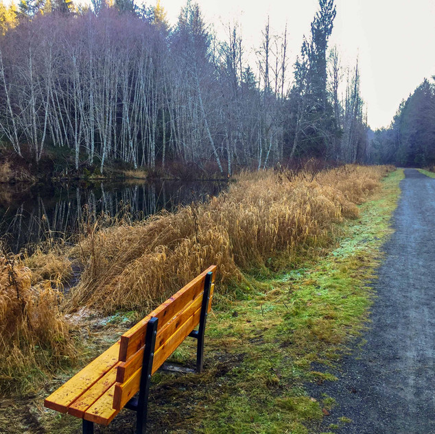 TransCanada Trail near Cobble Hill