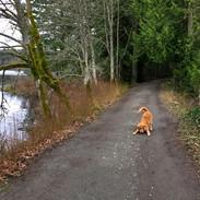Elk-Beaver Lakes footpath