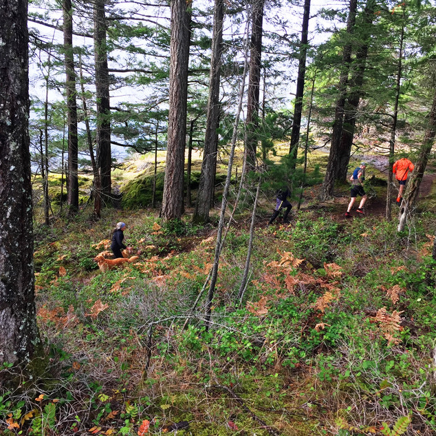 Gowlland Tod Trail
