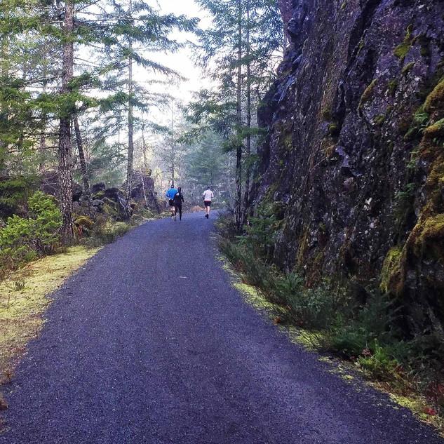 Galloping Goose Trail near Leechtown