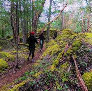 Mt Work trail running!