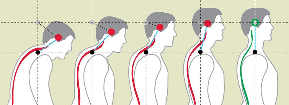 corrective-chiropractic.png