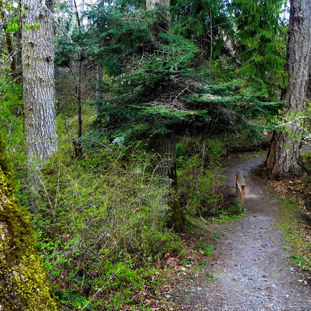 Ardmore trail