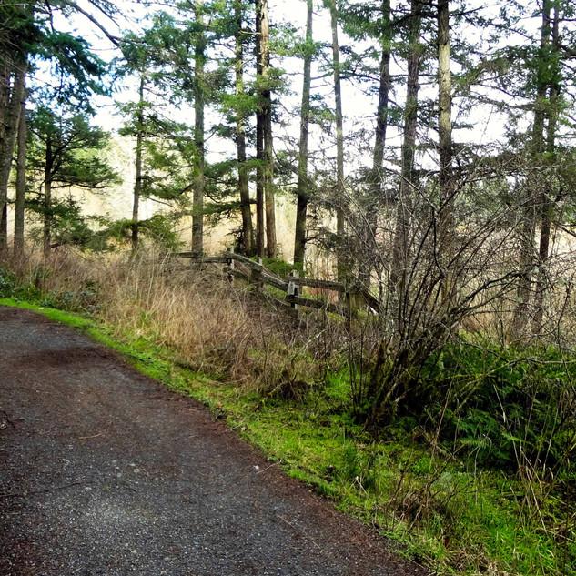 Glendale Trail