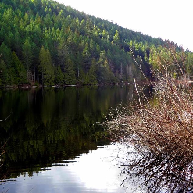 Pease Lake