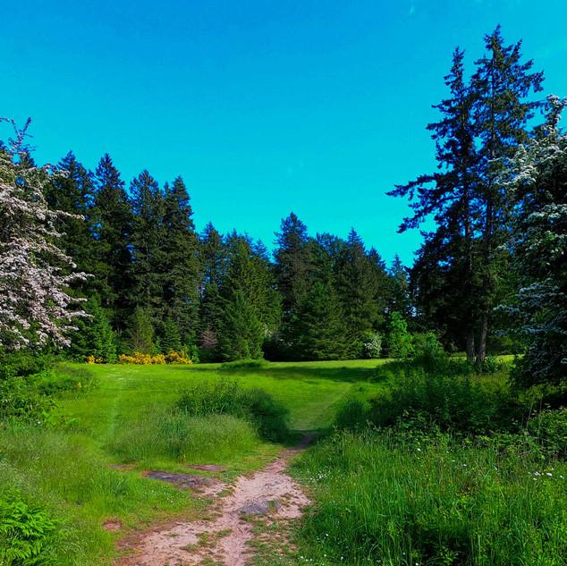 Beaver Lake Park