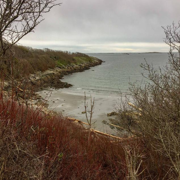Near Willows Beach