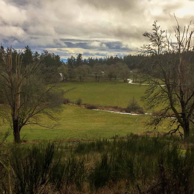 Prospect Lake and Munn Roads