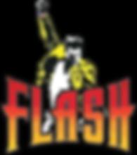 Flash Logo.png