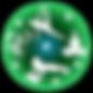 SHY_Symbol_AdvantageFlowtoglow.png