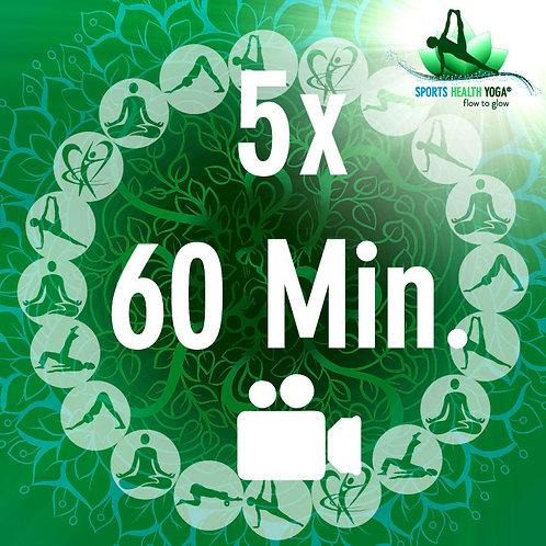 5er Abo für 5 Online Lektionen à 60 Min.