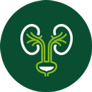 icone-urologia.png