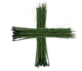 pines cross icon_green.png