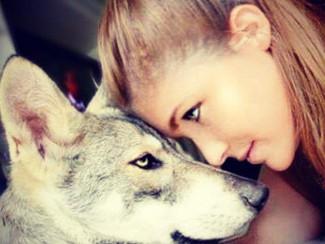 Meika, chien loup de Saarloos, une révélation...