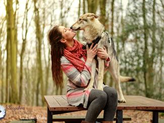Pourquoi les chiens vivent moins longtemps?