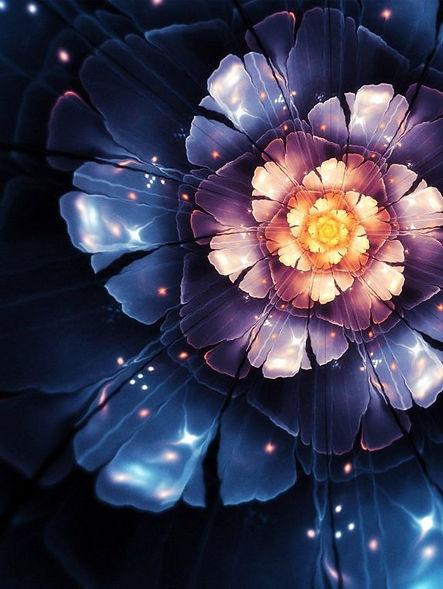 Fleur 1024x768.jpg