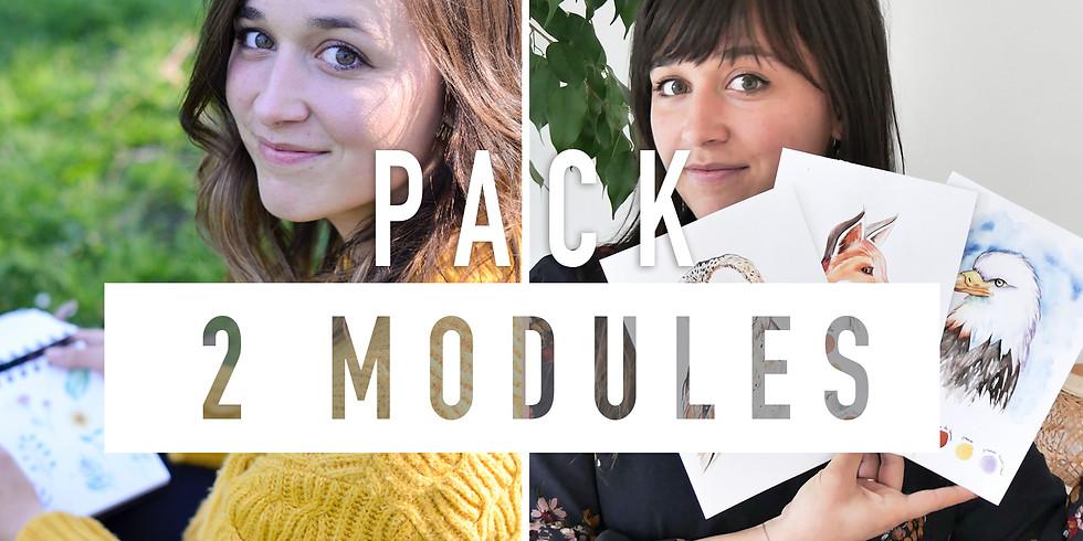 PACK 2 MODULES Apprentissage de l'aquarelle