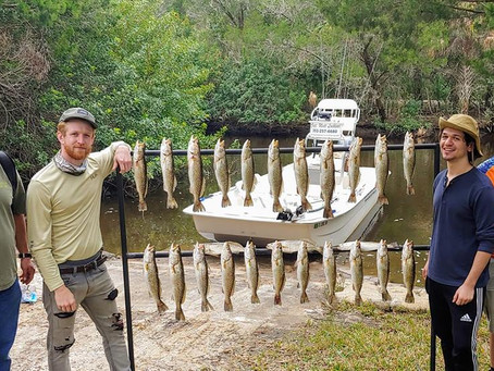 Homosassa Backcountry Fishing, Homosassa Florida