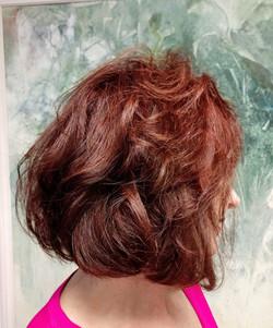 haircuts at nature coast homosassa.jpg
