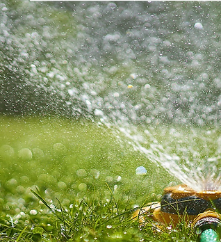 Watering-Grass