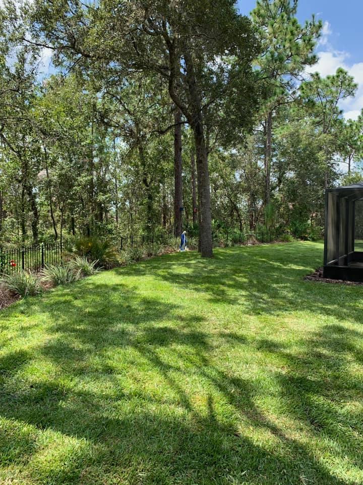 Partial Lawn sodding