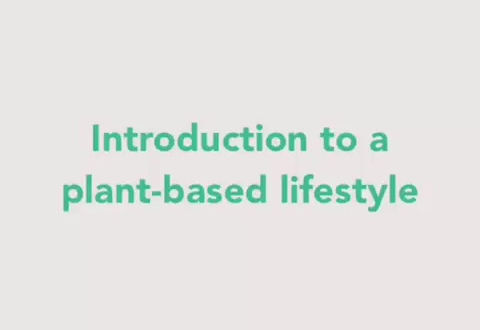 Introduction to a plant based diet