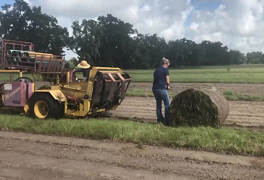 See our roll harvester in action