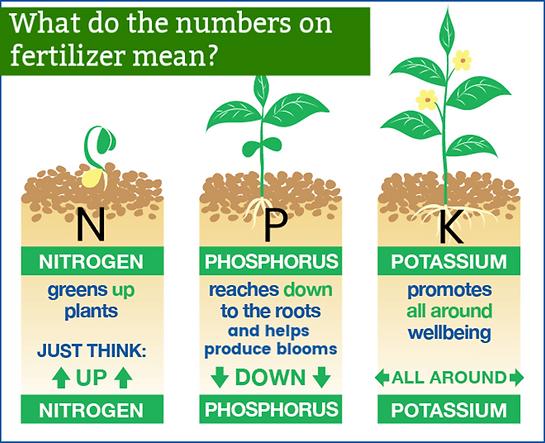 N-P-K-Fertilizer-Benefit-Plants