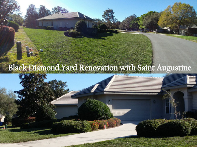 Black Diamond Yard Renovation