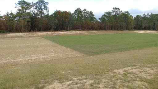 Lecanto YMCA Soccer fields 4