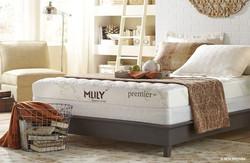Mlily Premier+gel Memory Foam Mattress