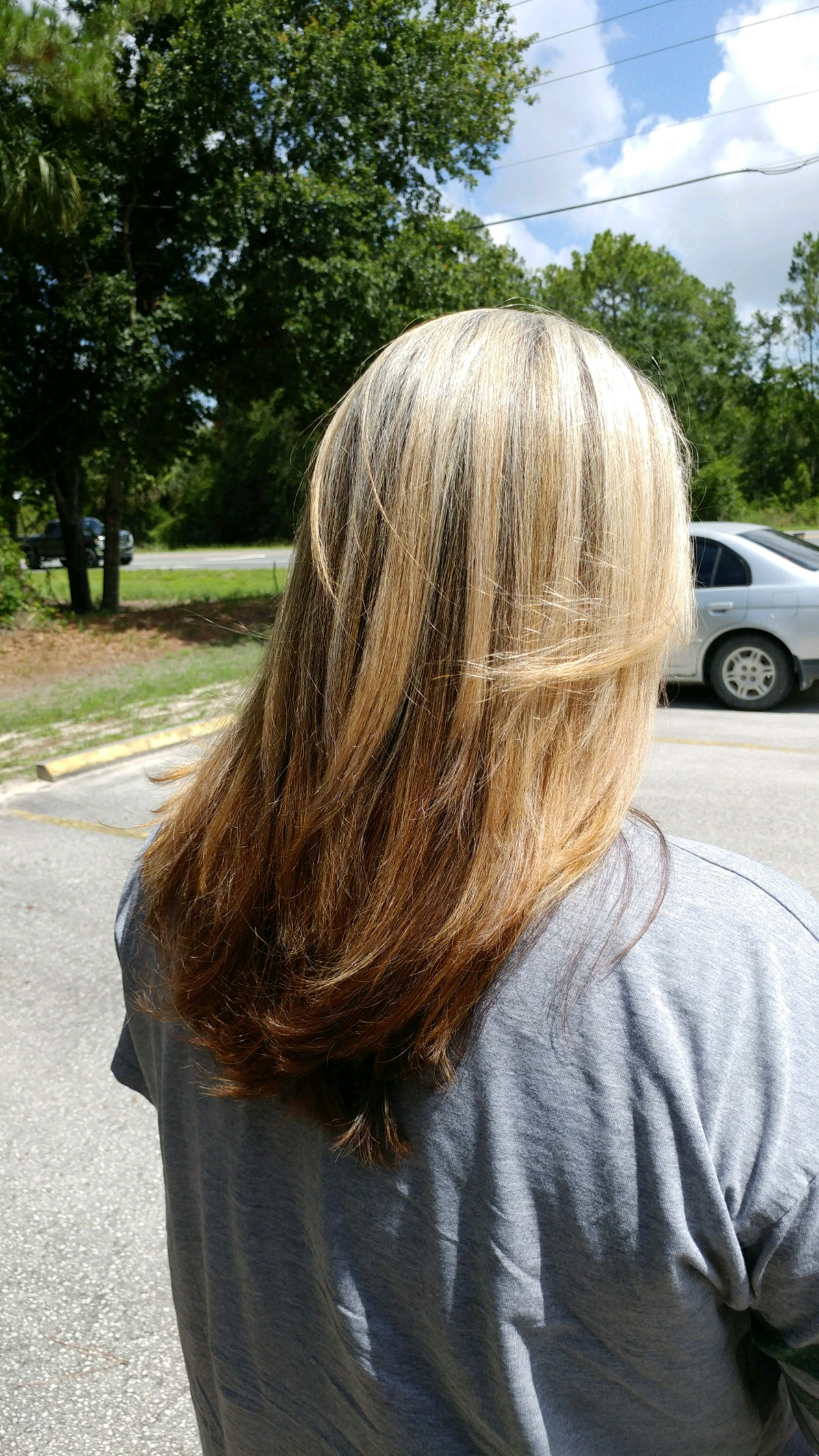 partial highlights color melt