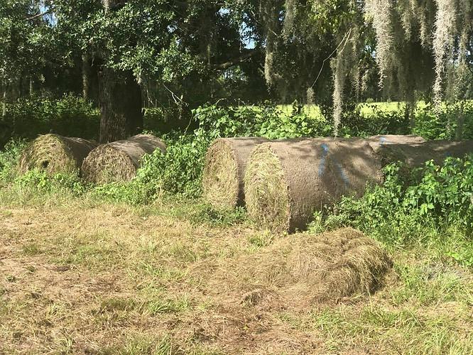 Circle t sod farms inc homosassa florida