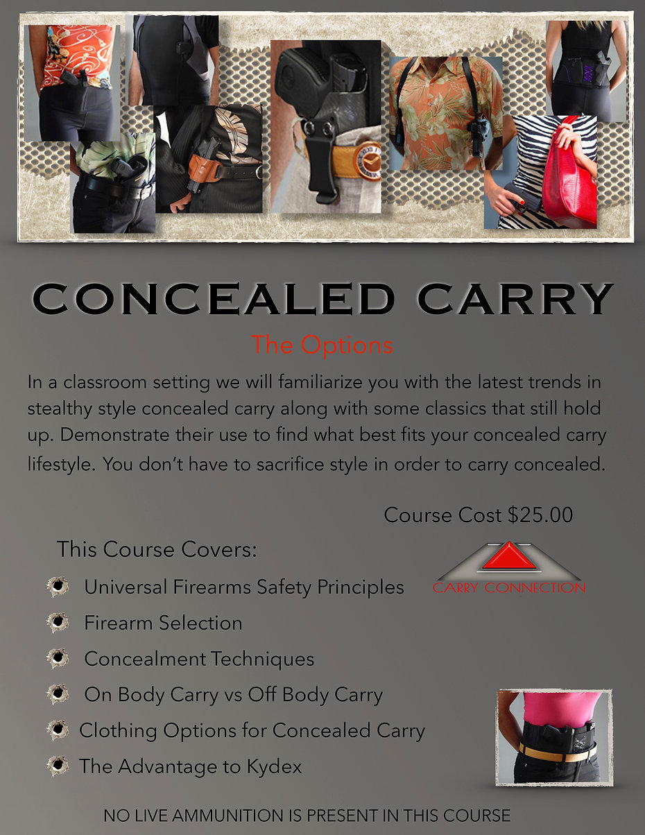Concealed Carry The Options.jpg