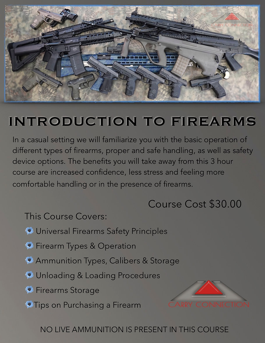 Introduction to Firearms.jpg