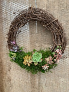 Succulent Grapevine Wreath