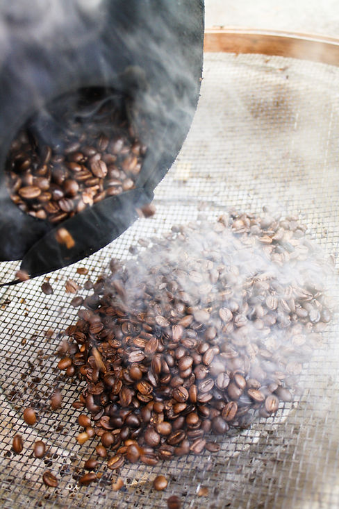 freshly roasted coffee spilling out onto a cooling screen