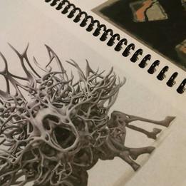 Booklet Zoology.jpg