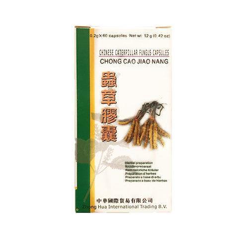 Capsule di cordyceps (Chong Cao Jiao Nang)