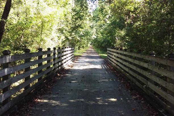 Equestrian Trail 5