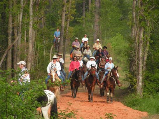 Equestrian Trail 3