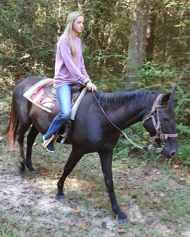 Equestrian Trail 7