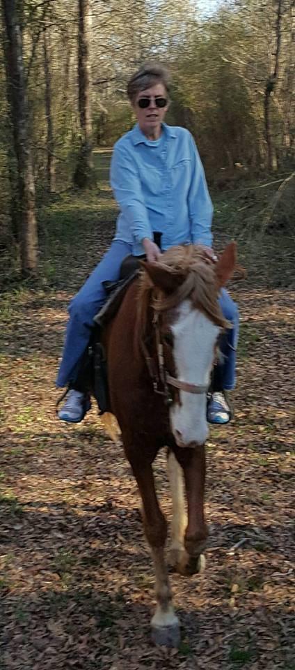 Equestrian Trail 9