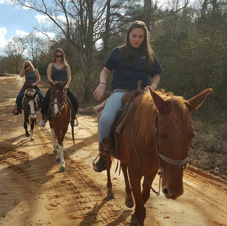 Equestrian Trail 10