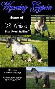whiskey.jpeg