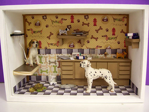 Roombox Miniatura VETERINÁRIOS 2