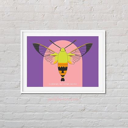 Gardenia bee hawk moth art print